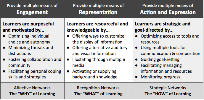 Universal Design For Learning Udl Starts With Why Rethinking